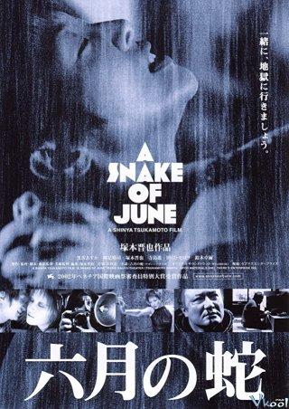 Giấc Mộng Liêu Trai - A Snake Of June