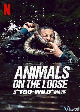 Bạn Đối Đầu Với Thiên Nhiên: Dã Thú Trốn Thoát Animals On The Loose: A You Vs. Wild Movie
