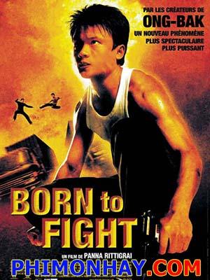Sinh Ra Để Chiến Đấu Born To Fight.Diễn Viên: Nappon Gomarachun,Santisuk Promsiri,Dan Chupong