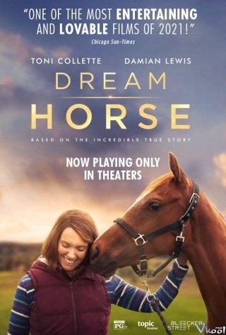Giấc Mơ Thảo Nguyên - Dream Horse