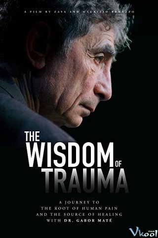 Sự Khôn Ngoan Từ Tổn Thương The Wisdom Of Trauma.Diễn Viên: Kô Shibasaki,Masami Nagasawa,Tsutomu Yamazaki,Tetta Sugimoto