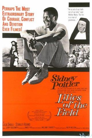 Bông Huệ Ngoài Đồng Lilies Of The Field.Diễn Viên: Burt Lancaster,Karl Malden,Thelma Ritter,Neville Brand,Betty Field,Telly Savalas