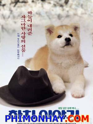 Chú Chó Trung Thành Hachiko Monogatari: A Dogs Tale.Diễn Viên: Joarichard Gere
