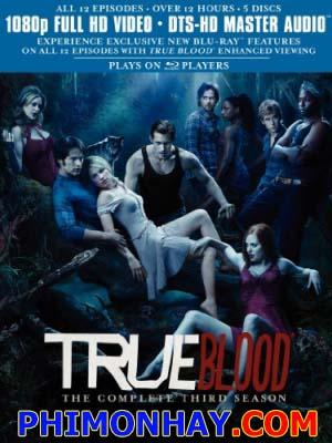 Thần Huyết 4 - True Blood 4