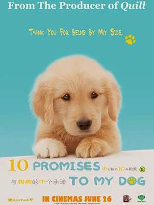 10 Promises To My Dog - 10 Lời Hứa Với Chú Chó Của Tôi