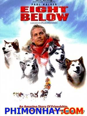 Những Chú Chó Dũng Cảm Âm Tám Độ: Eight Below.Diễn Viên: Paul Walker,Jason Biggs,Bruce Greenwood