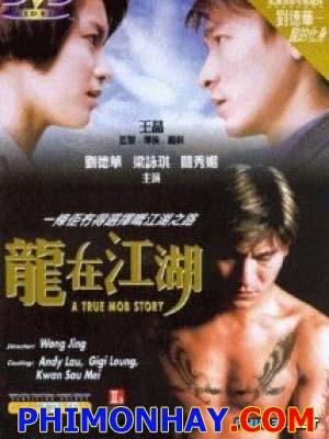 Long Tại Giang Hồ A True Mob Story.Diễn Viên: Andy Lau,Gigi Leung,Suki Kwan,Lưu Đức Hoà