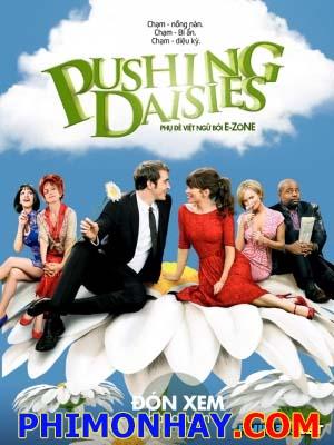 Nhật Ký Hoa Cúc Pushing Daisies.Diễn Viên: Lee Pacechi Mcbride