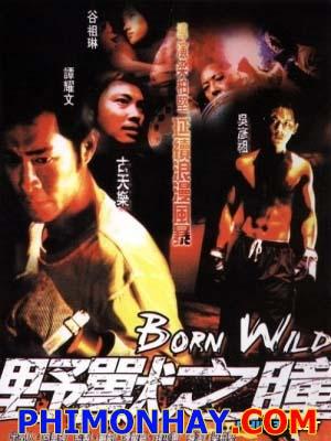 Dã Chiến Giang Hồ - Born Wild