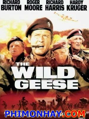 Ngỗng Trời - The Wild Geese