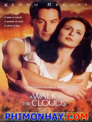 Dạo Bước Trên Mây A Walk In The Clouds.Diễn Viên: Keanu Reeves,Aitana Sánchez Gijón,Anthony Quinn,Giancarlo Giannini