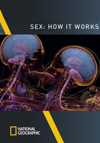 Hoạt Động Của Tình Dục - Sex: How It Works