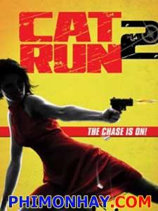 Sát Thủ Mèo Hoang 2 Cat Run 2.Diễn Viên: Scott Mechlowicz,Alphonso Mcauley,Winter Ave Zoli
