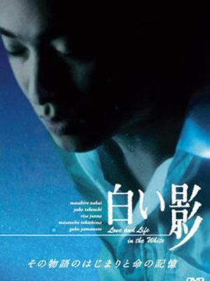 Shiroi Kage - Đèn Không Hắt Bóng