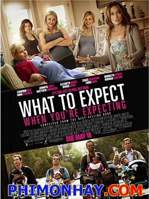 Tâm Sự Bà Bầu - What To Expect When Youre Expecting Việt Sub (2012)