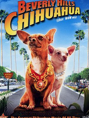 Những Chú Chó Chihuahua Ở Đồi Beverly Beverly Hills Chihuahua.Diễn Viên: Piper Perabo,Manolo Cardona,Jamie Lee Curtis,José María Yazpik