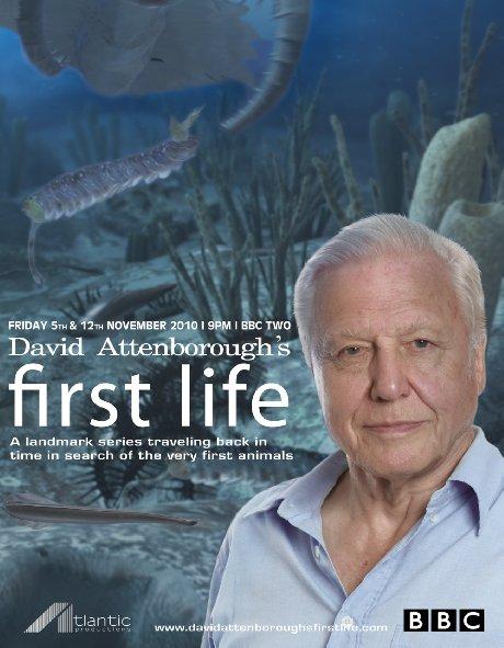 Nguồn Gốc Của Sự Sống First Life.Diễn Viên: David Attenborough,Hazel Barton,Jean,Bernard Caron