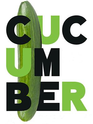 Dưa Chuột Phần 1 - Cucumber Season 1 Việt Sub (2015)