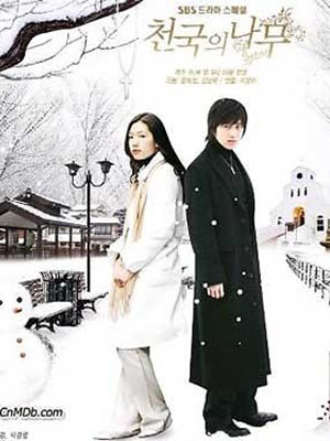 Cây Thông Thiên Đường Trees In Heaven.Diễn Viên: Park Shin Hye,Lee Wan