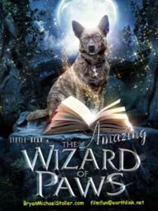 The Amazing Wizard Of Paws - Chú Chó Phù Thủy