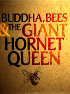 Buddha - Bees And The Giant Hornet Queen