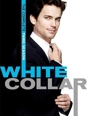 Cổ Cồn Trắng Phần 3 - White Collar Season 3 Việt Sub (2011)