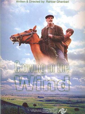 Ngọn Gió Yêu Thương Growing In The Wind.Diễn Viên: Hossein Abedini,Zabi Afshar,Yalda Ghashghaie