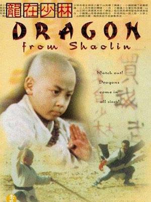 Rồng Tại Thiếu Lâm - Dragon From Shaolin