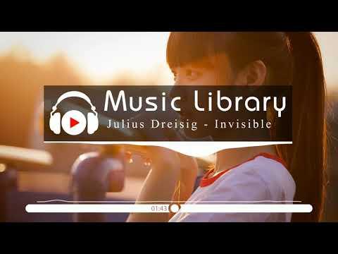 [No Copyright Music] Julius Dreisig & Zeus X Crona - Invisible