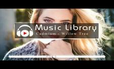 [No Copyright Music] Rival & Cadmium - Willow Tree (feat. Rosendale)