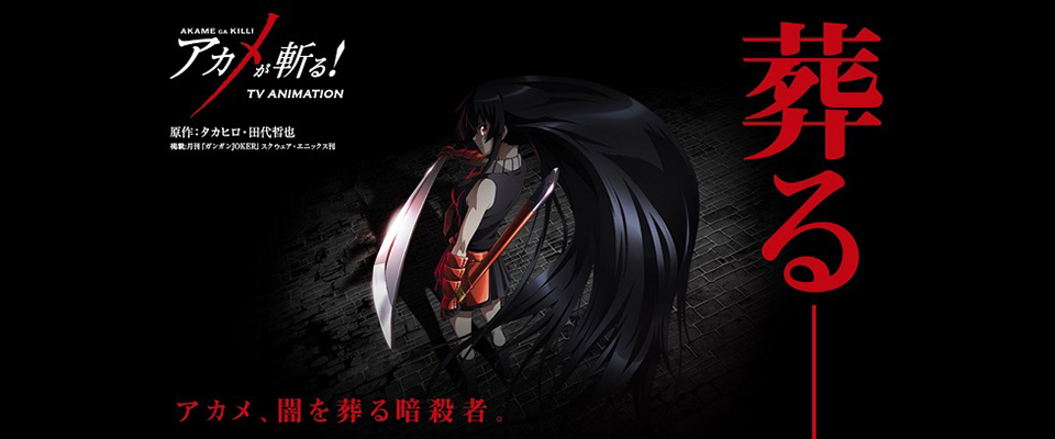 Sát Thủ Akame - Akame Ga Kill: Red Eyes Sword (Tập 24/24)